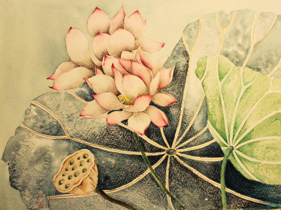 flower-beauty-contest